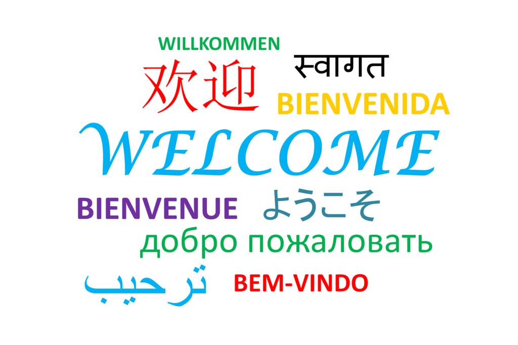 Aprèn un idioma nou per aquest 2017