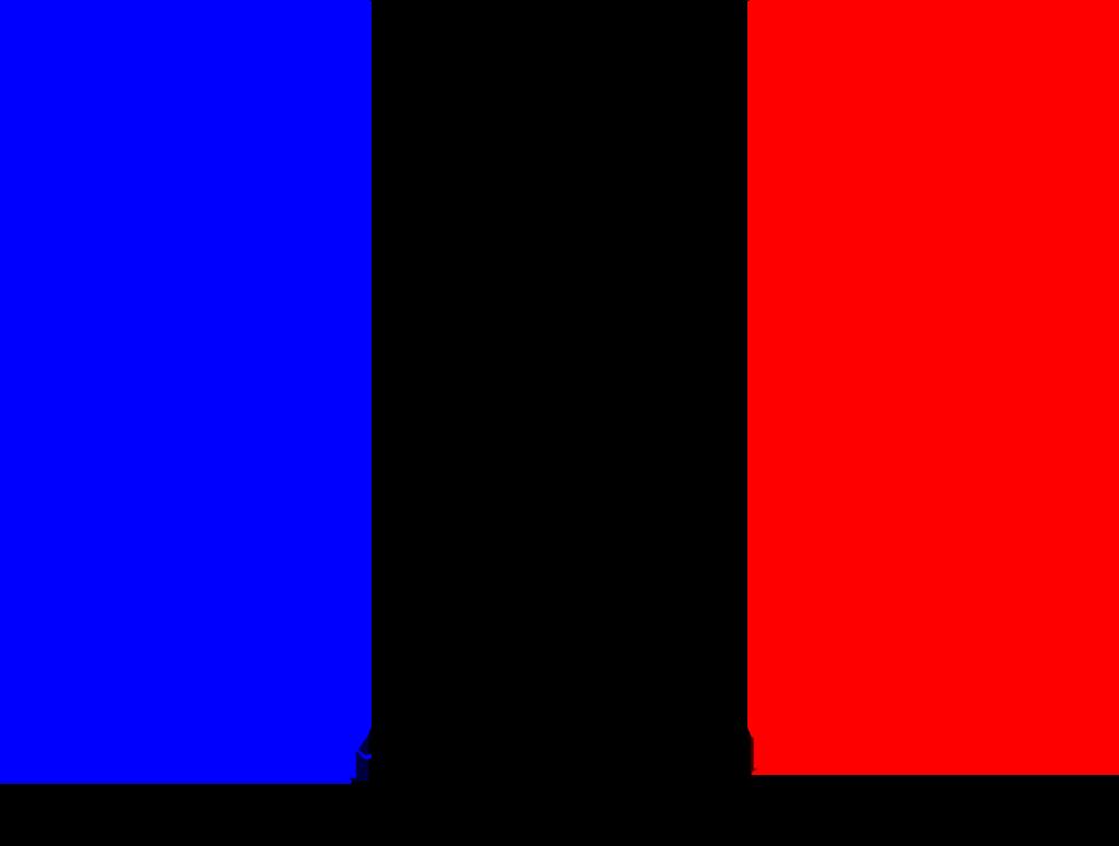 Como escoger el curso de francés adecuado